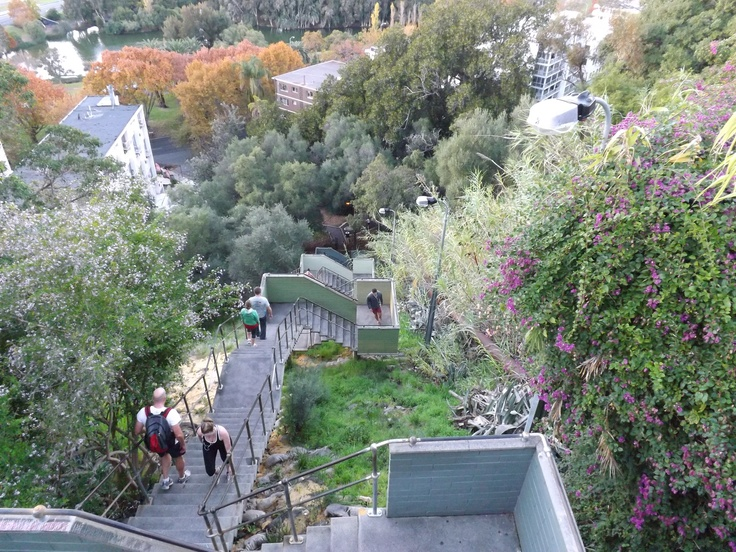 This is called Jacobs Ladder, it has 242 steps, and I go up it 10 times 2 x a week.