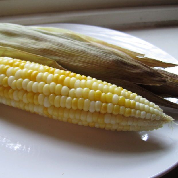 Best 25 how to roast corn ideas on pinterest how to cook corn how to roast corn on the cob in the oven ccuart Image collections