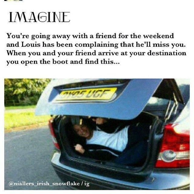 Louis imagine- Haha omg he's too cute :)>> now I know louis fits in a car boot....