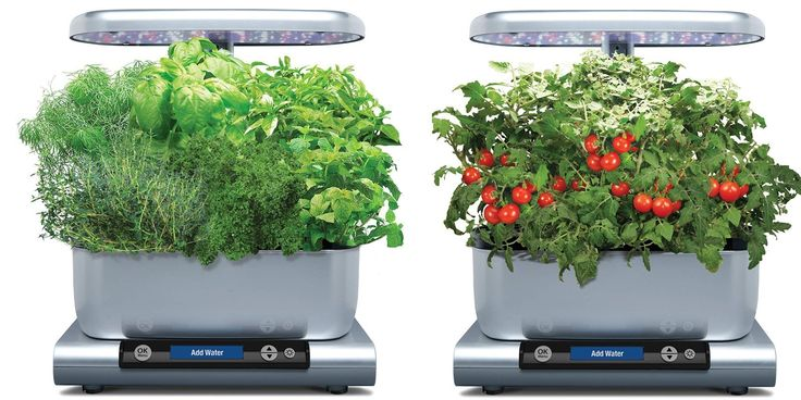 This Harvest 6 Pod Smart Countertop Aerogarden Is Down To 400 x 300
