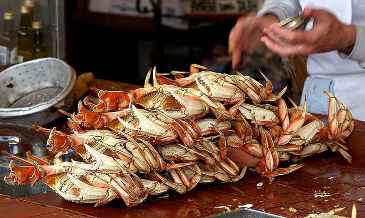 'Don't Eat the Dungeness Crab!' California Health Department Warns