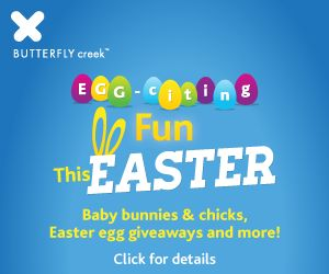 Win a family day pass to Butterfly Creek.