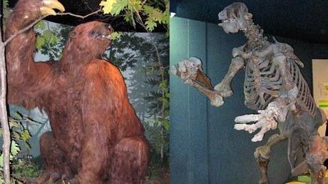 8 incríveis animais extintos que poderiam ser ressuscitados | Exame.com