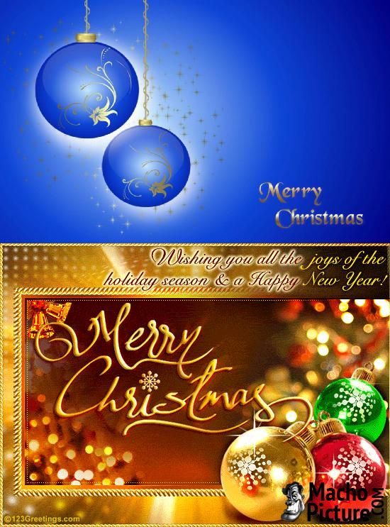 340 best christmas cards images on pinterest christmas christmas free christmas cards email 3 photo m4hsunfo