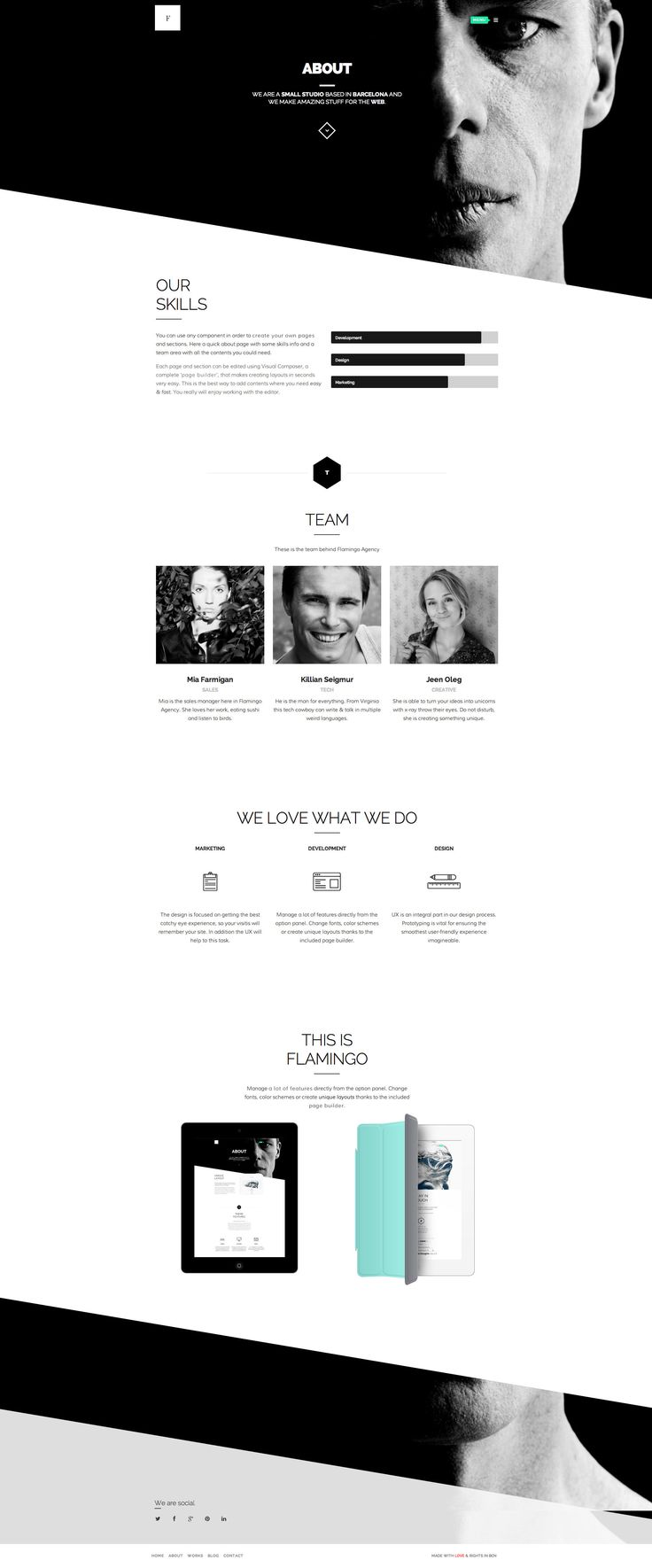 Flamingo - Agency & Freelance Portfolio Theme http://themeforest.net/item/flamingo-agency-freelance-portfolio-theme/6077145?ref=wpaw #portfolio #agency #freelance