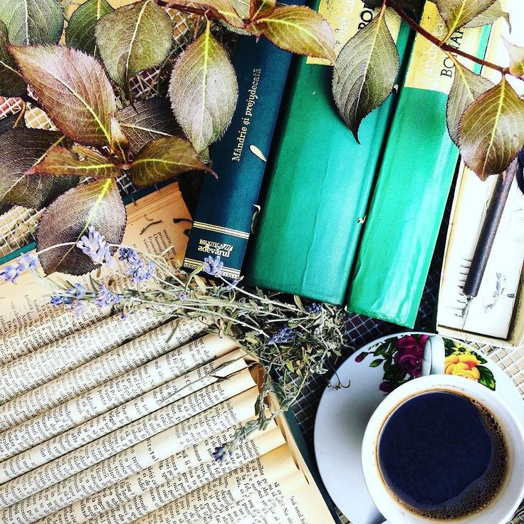 What is your favorite hot drink? I am always up for a hot coffee  or chocolate ... I am not a tea drinker but I like sweet teas ...linden tea is my favorite. #octoberlibrary17 - day 1 Green #fallbookchallenge17 - day 1 Fall #tbr: for me right now is to finish All Souls Trilogy and really want to reread Dracula  #tdfoct17 - day 1 October tbr All Souls Trilogy #readingadventureoct17 - day 1 tea time book and drink #rfaboctober17 - day 1 October tbr #duskangeloct17 - day 1 October tbr…