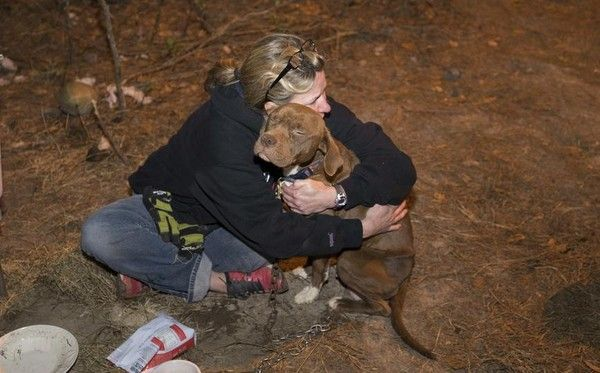 Pit Bull Kidnapped In 2013 Miraculously Comes Home ​—​ With 10 Puppies
