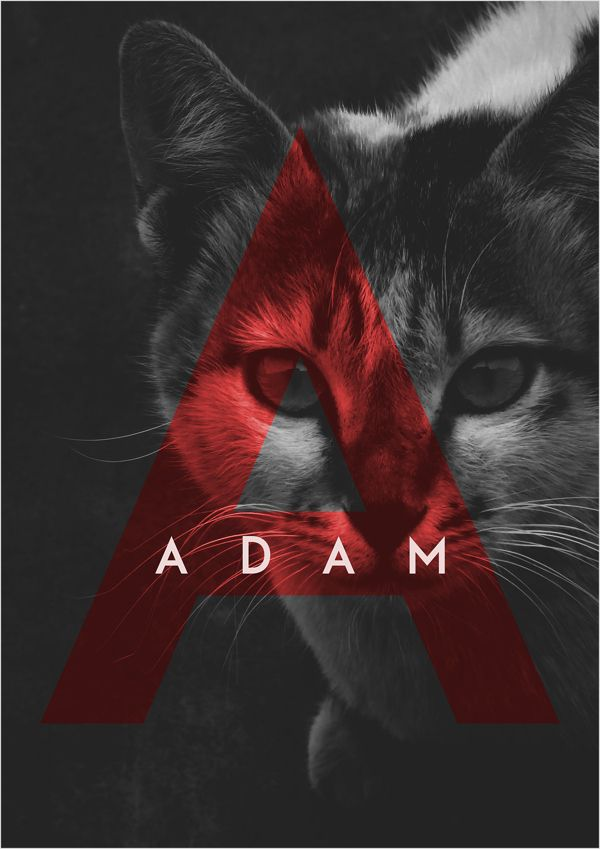 Adam | Font | Free Download