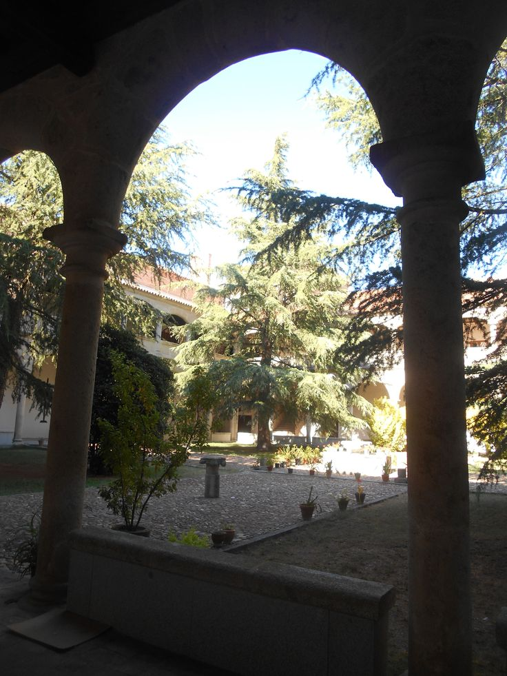 Jardin y patio interior.