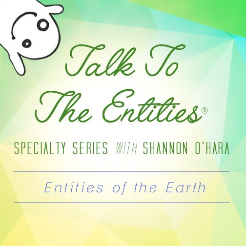 Entities of the Earth are the sprites and fairies we've all read about in books as if they are a fairytale and not real. Well, what if I told you that they are? How much fun could you have receiving from them? #TTTE #ShannonOHara #Entities #Earth