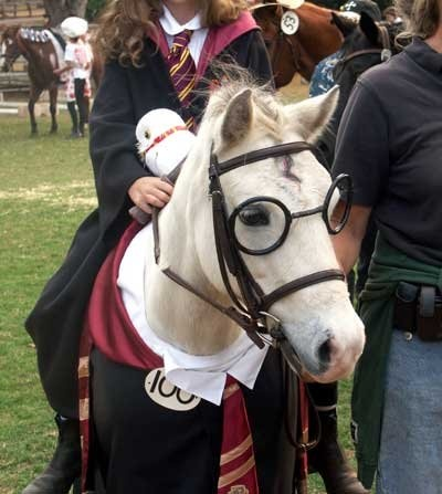 Harry Potter Horse Costume.  i think i like this too much.
