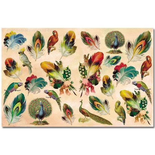 Manos Maravillosas Papel fino decoupage: Plumas y aves ...