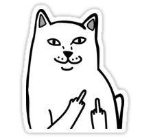Middle Finger Cat Sticker