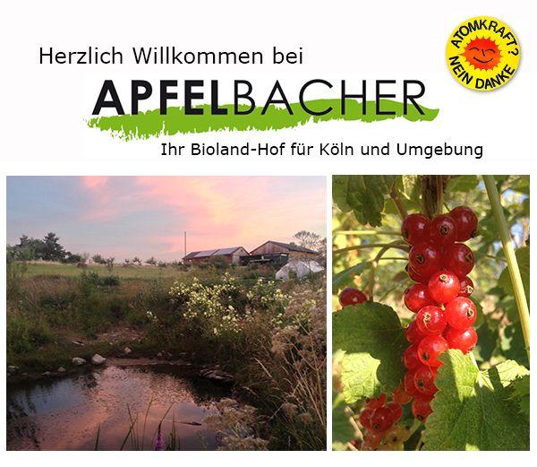 Simple Bioland Apfelbacher Biobauernhof Bornheim Brenig