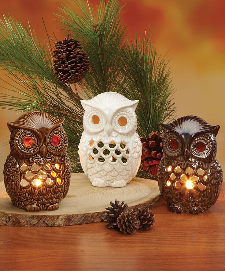 White & Brown Owl Candleholder Set