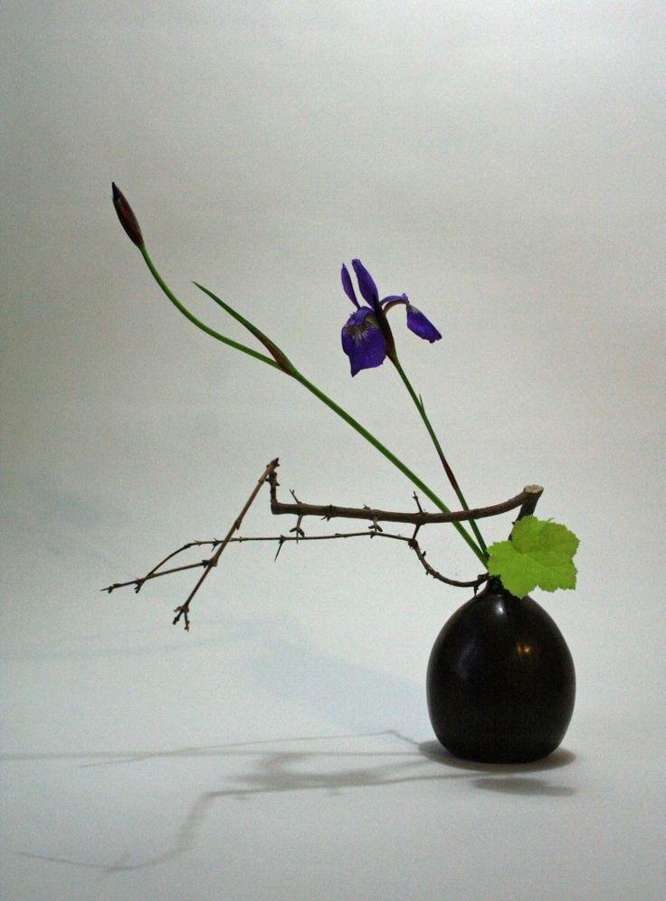 Pomegranate branche iris and heuchera 756x1024 Iris, Pomegranate Branch and Heuchera Leaf