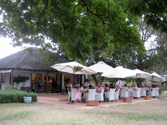 Penisula tea gardens Maylands, Perth Tea places, Tea