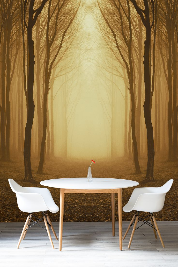 119 best Forest Wallpaper Murals images on Pinterest | Bedroom ideas ...