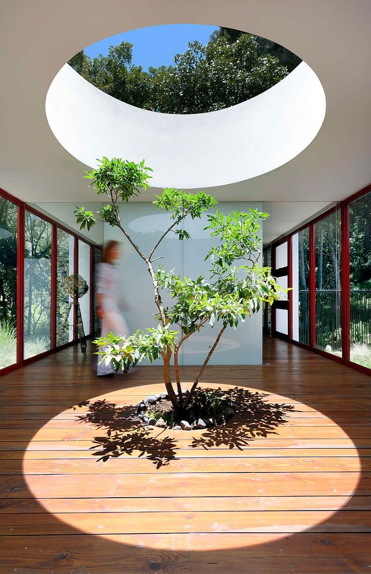 Best 25+ Indoor courtyard ideas on Pinterest | Atrium, Atrium garden and  Atrium house