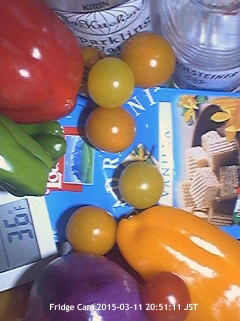 Refrigerator Cam -- Webcam in Fridge --