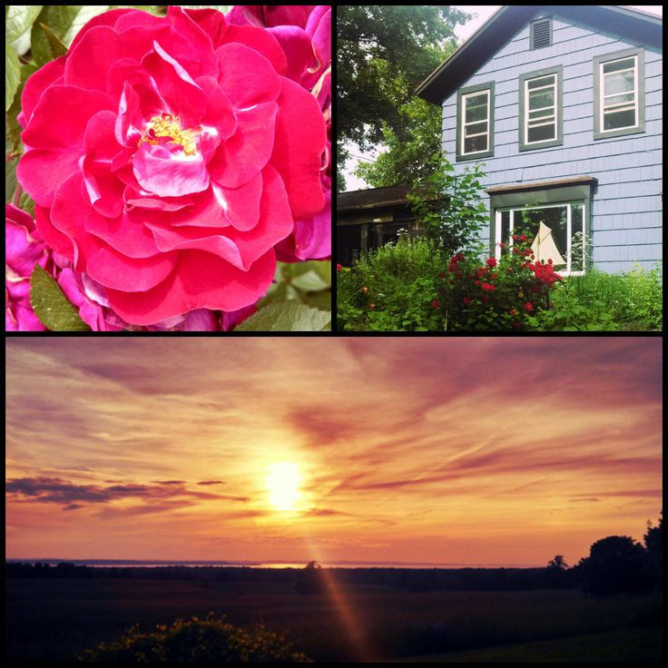 Northern Michigan - Roses - Cabins - Sunsets - Weather - just Amazing!
