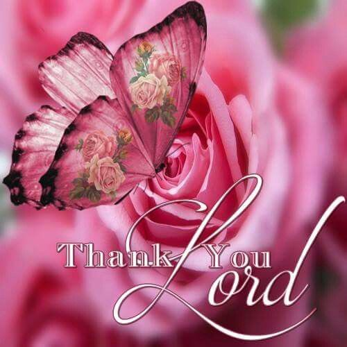Thankful Quotes Inspirational: Best 25+ Thank You Lord Ideas On Pinterest