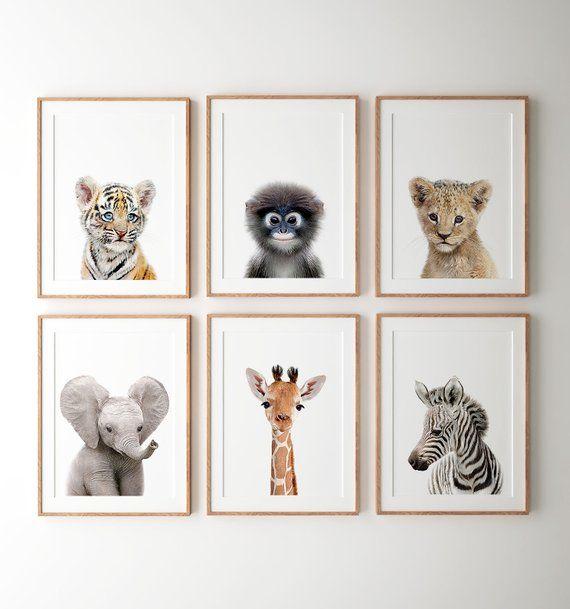 Safari Nursery Decor Printable Art Safari Animal Prints Nursery Wall Art Jungle Animals Elephant Art Baby Room Crown Prints Tcp101 Nursery Animal Prints Safari Nursery Decor Safari Animal Prints Nursery