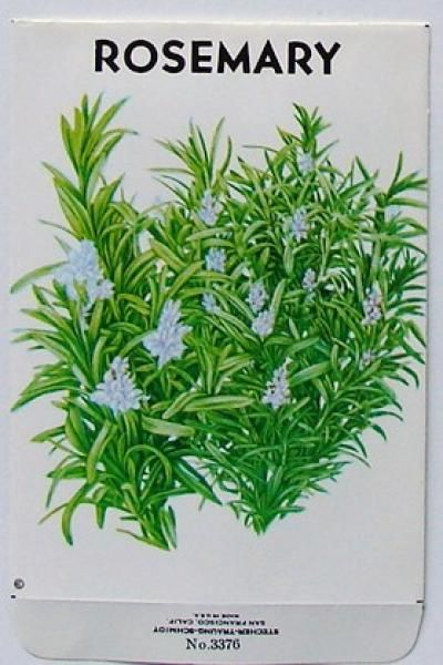 Vintage Rosemary Herb Label (80's reprint of 1920's design)
