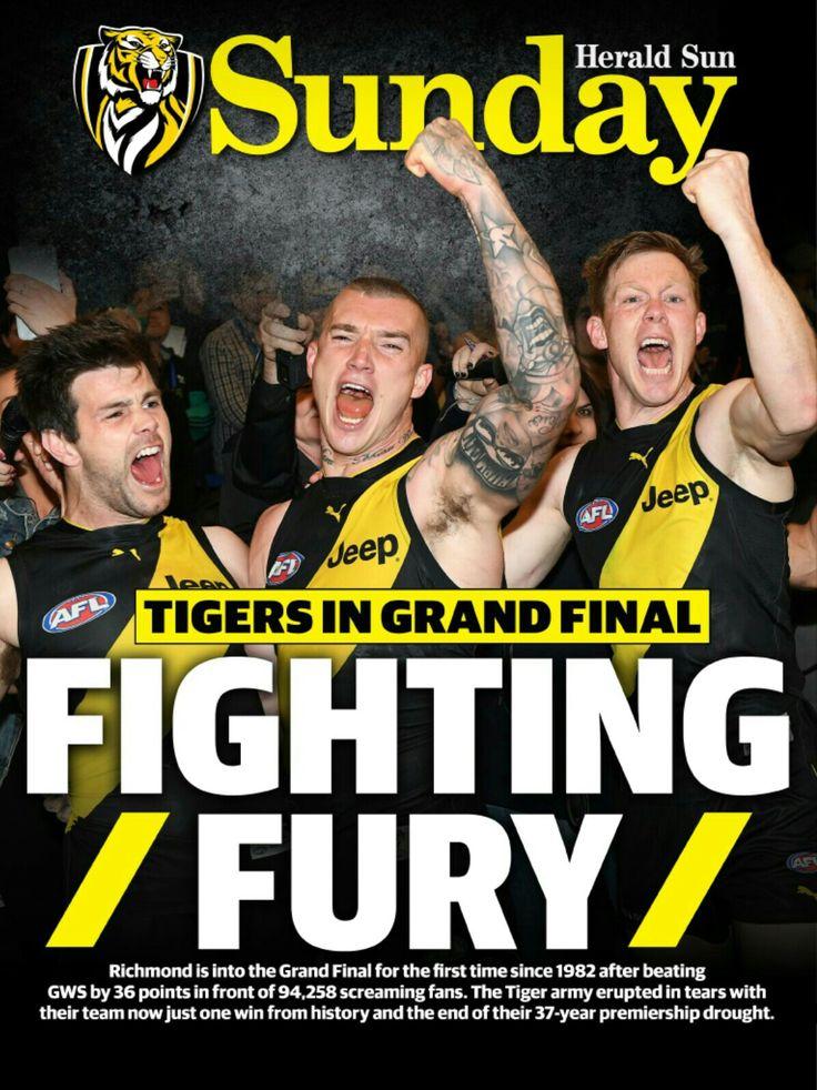 Richmond Football Club, 2017 grand finalists. Go tigers!