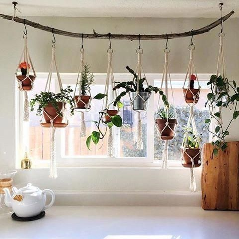 35 Creative Hanging Plant Projects for Scandinavian Style