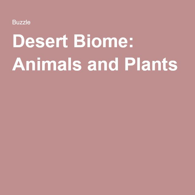 Desert Biome: Animals and Plants, with links to more information