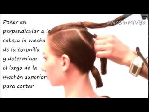 Consulta el proceso paso a paso en este link: http://www.nosinmivisa.com/2014/08/tutorial-corte-bob-facilisimo-para-hacerse-en-casa.html Con tres gomas elást...