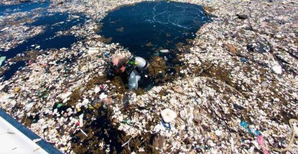 Definitivamente la contaminación del mundo se está saliendo de control. Eso es algo que podemos apreciar en las imágenes que fueron captadas en la costa de Honduras, donde la basura y los restos de plástico que se acumulan allí, simplemente pueden dejar a cualquiera con la boca abierta. Se estima que para el 2050, los …