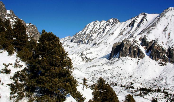Mlynicka valley in the High Tatras