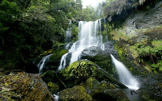 Champagne Falls, near Lemonthyme Lodge, Cradle Mountain, Tasmania, Australia