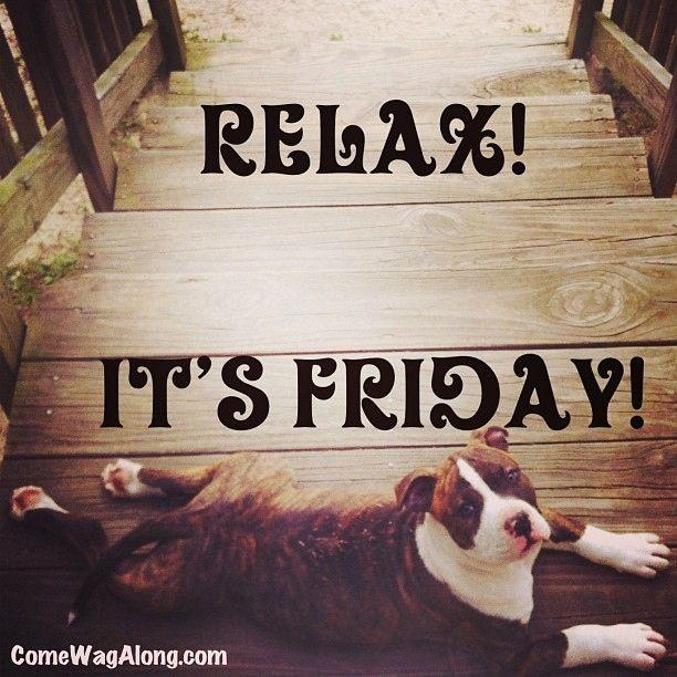 Thank God It's Friday - Dog Edition