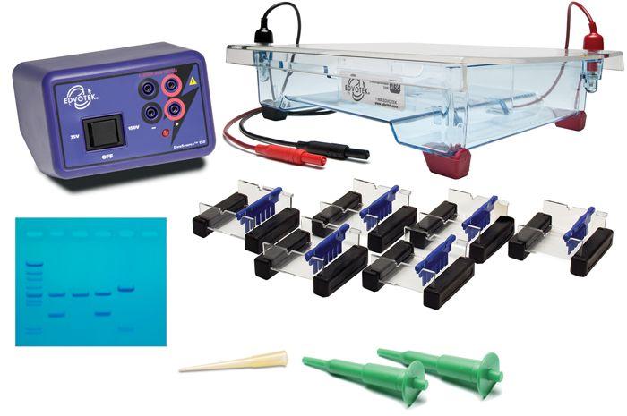 5062 - Classroom DNA Electrophoresis LabStation™