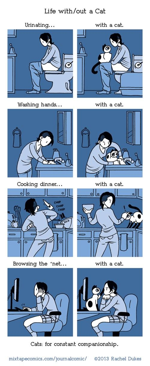 I don't have a cat, but this is so funny. This is for my friends Sheri, Phil, and Debbie!