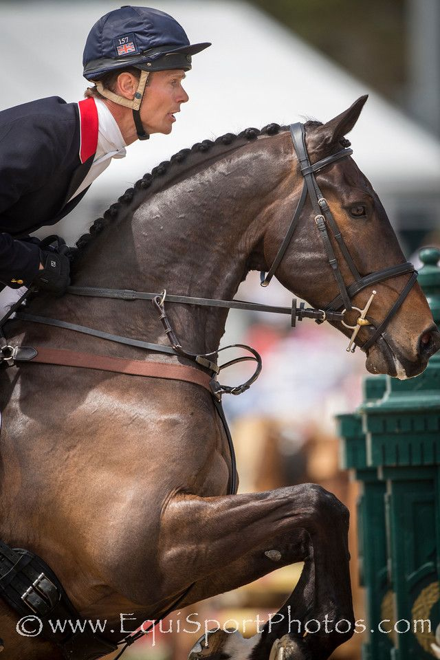William Fox-Pitt and Bay My Hero at Rolex 3-Day Event '14 - EquiSportPhotos