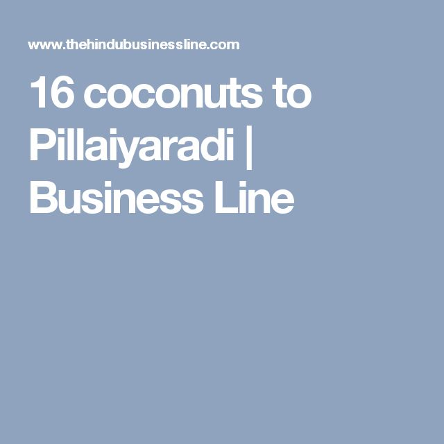 16 coconuts to Pillaiyaradi | Business Line
