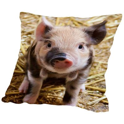 "East Urban Home Pig Piglet Farm Throw Pillow Color: Natural, Size: 14"" H x 14"" W x 2"" D"
