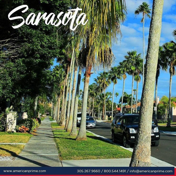 Sarasota County and its surroundings are known as the cultural center of Florida. These marvelous surroundings are full of museums botanical gardens wildlife refuges and dance art and music halls. It is officially known for its beaches with the finest white sand in the world making beach life here the best to be found. . . http://ift.tt/2jUmgOx  #mexico #peru #chile #colombia #guatemala #miami #losangeles #sandiego #houston #orlando #mexicodf #barcelona #madrid #buenosaires #lima #santiago…