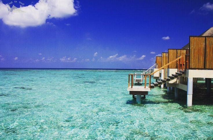 Natures colors of blue ألوان الأزرق بالطبيعة ولا اروع #easttowestadventures #maldives #travelblogger #travelphotography  #adaraanprestige  #honeymoon #5starmeal #watervilla #privatepool #indianocean #whitesand #palmtrees #privateisland #onceinalifetime #stepstothesea