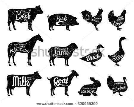 食べ物・飲み物 写真素材 : Shutterstock 写真素材