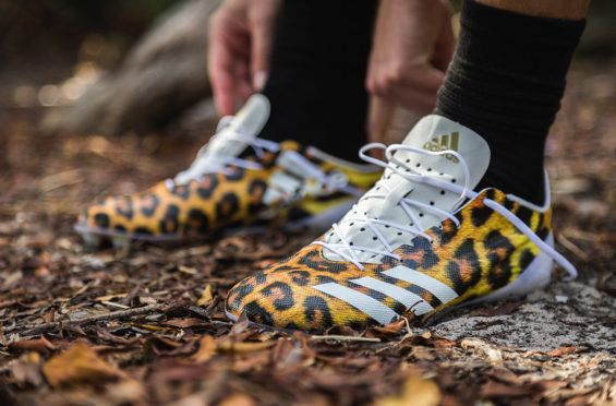 http://SneakersCartel.com The Latest adidas adiZero 5-Star 40 Uncaged Cleats Are Inspired By A Cheetah #sneakers #shoes #kicks #jordan #lebron #nba #nike #adidas #reebok #airjordan #sneakerhead #fashion #sneakerscartel