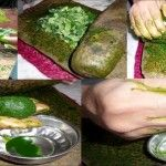 Como usar o suco de folha de mamão para tratar a dengue em 48 horas