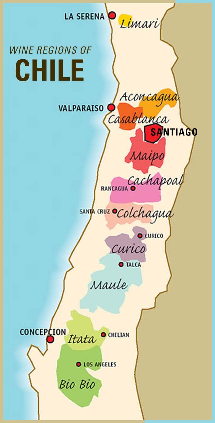 Chile has some of the world's most spectacular vineyards. Bounded by the Atacama desert, the Pacific Ocean, snow-capped Andes and southern ice fields, this is the only wine region where both cacti and snow are interspersed amongst vines. - I LoVed my wine tours in Chile!