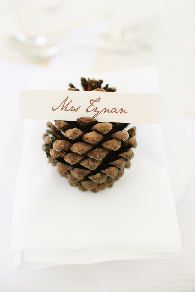 pine cone with place card for rustic wedding ideas