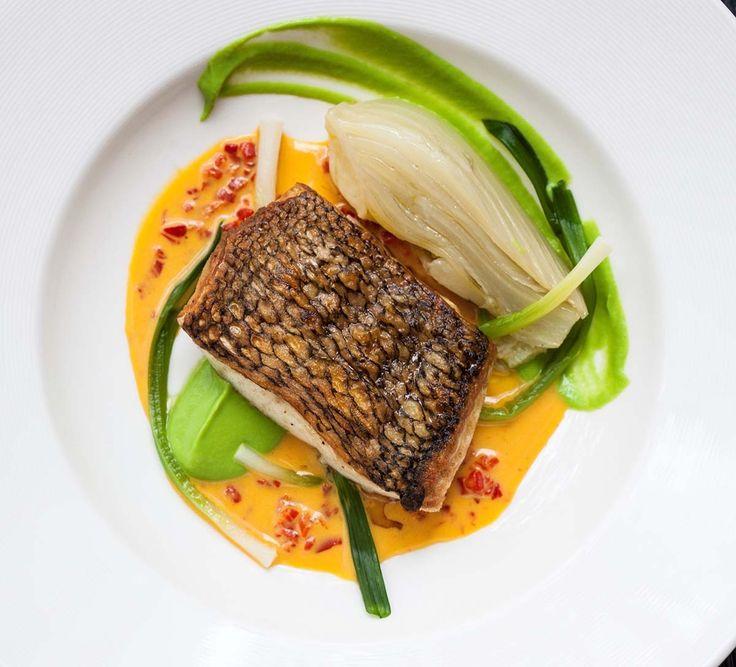 Black Bass with Braised Fennel, Sweet Pea Puree, Saffron-Chamomile Sauce   Saul Bolton
