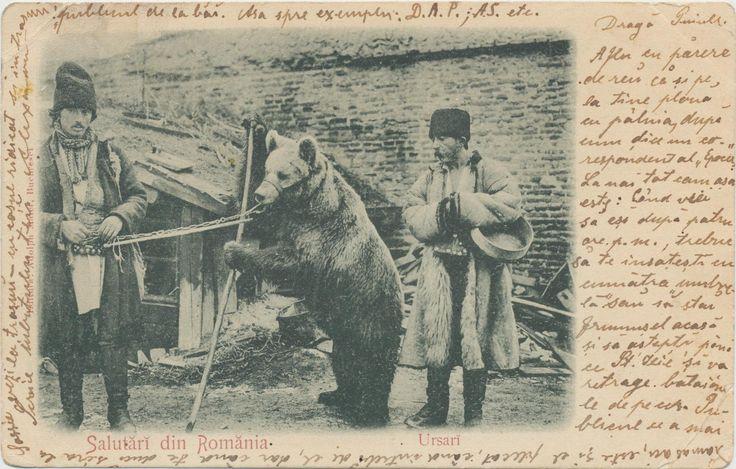Adolph Maier - Gypsy bear tamers (Ţigani ursari), post card 1900-1910